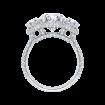 18K White Gold Oval Diamond Three-Stone Halo Engagement Ring